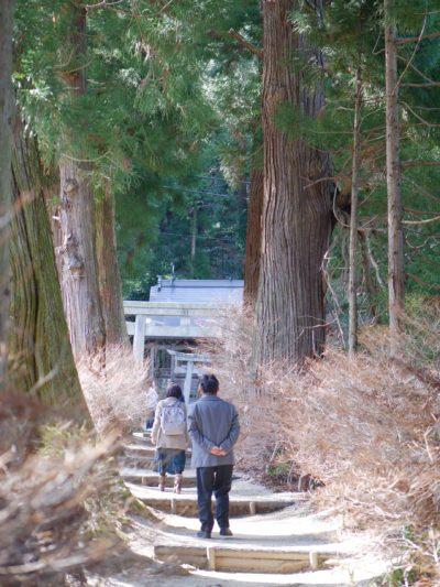 つきにこ CD 名刺 高天彦神社