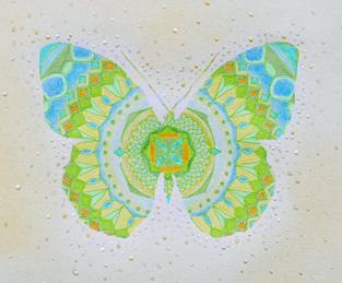 蝶々 販売中 ミニ