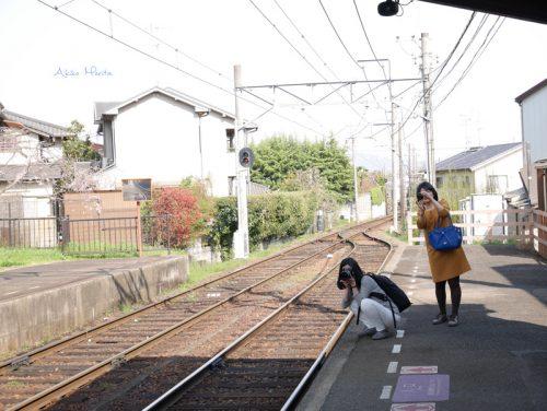画像 京都